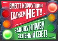 2.Жолнин Роман 17 лет г.Нижний Новгород.jpg